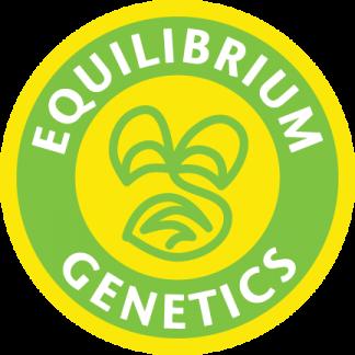 Equilibrium Genetics