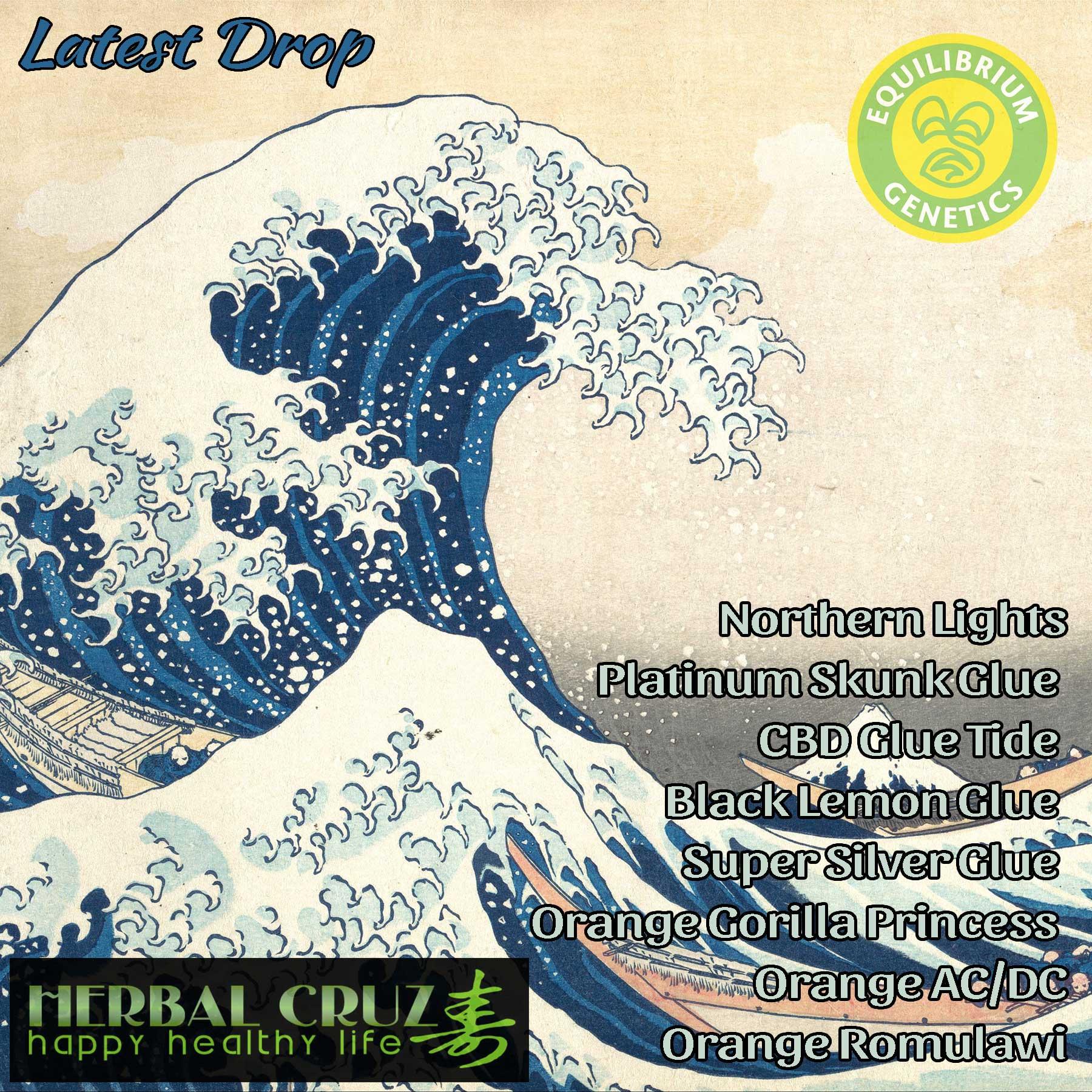 Latest Drop: Herbal Cruz