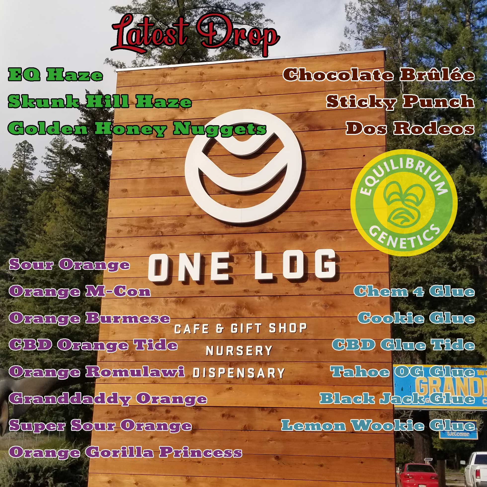 Latest Drop: One Log Tree House