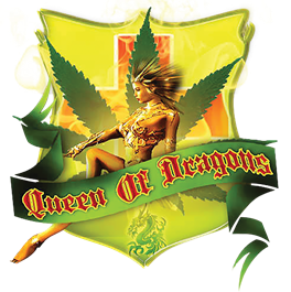 Queen of Dragons logo