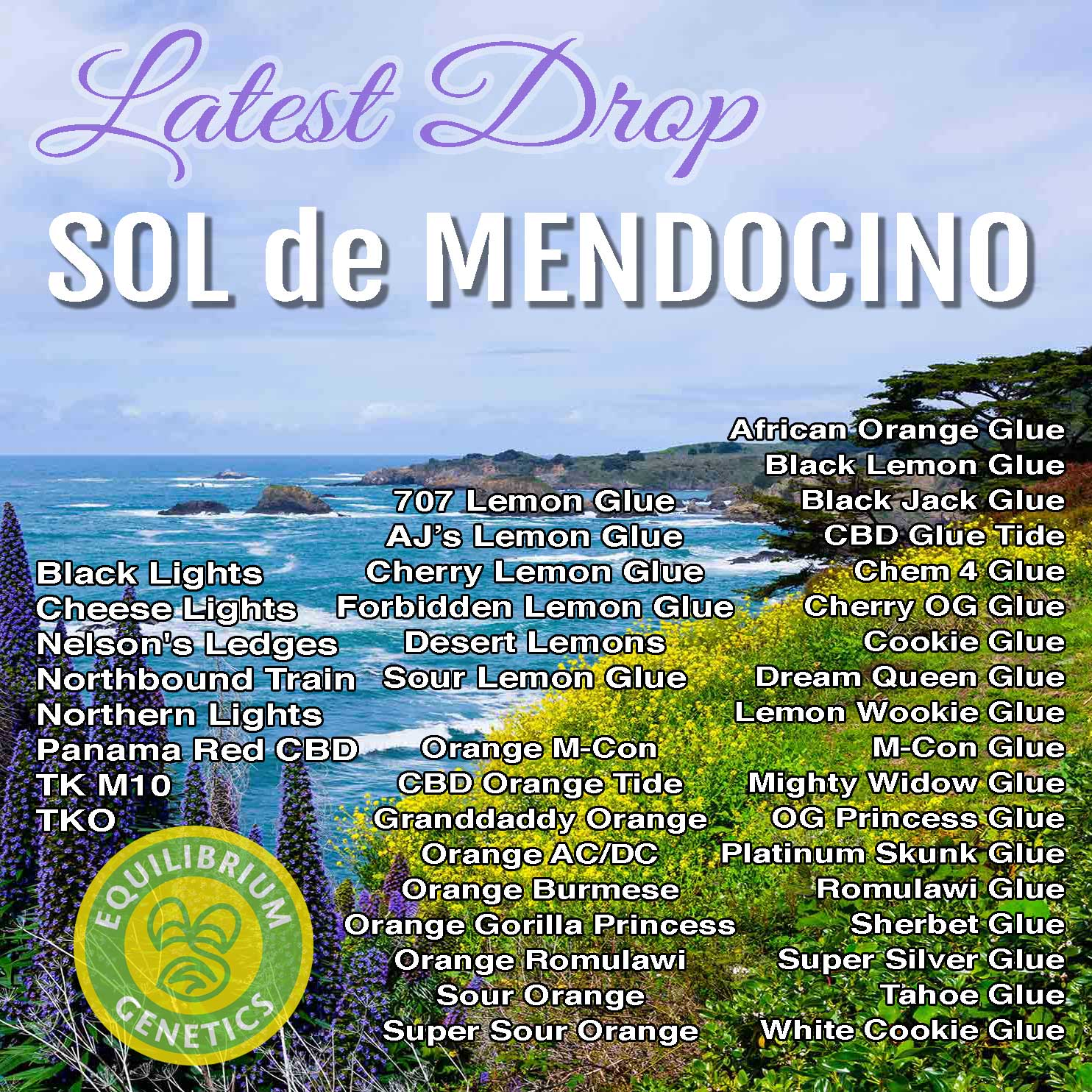 Latest Drop: Sol de Mendocino