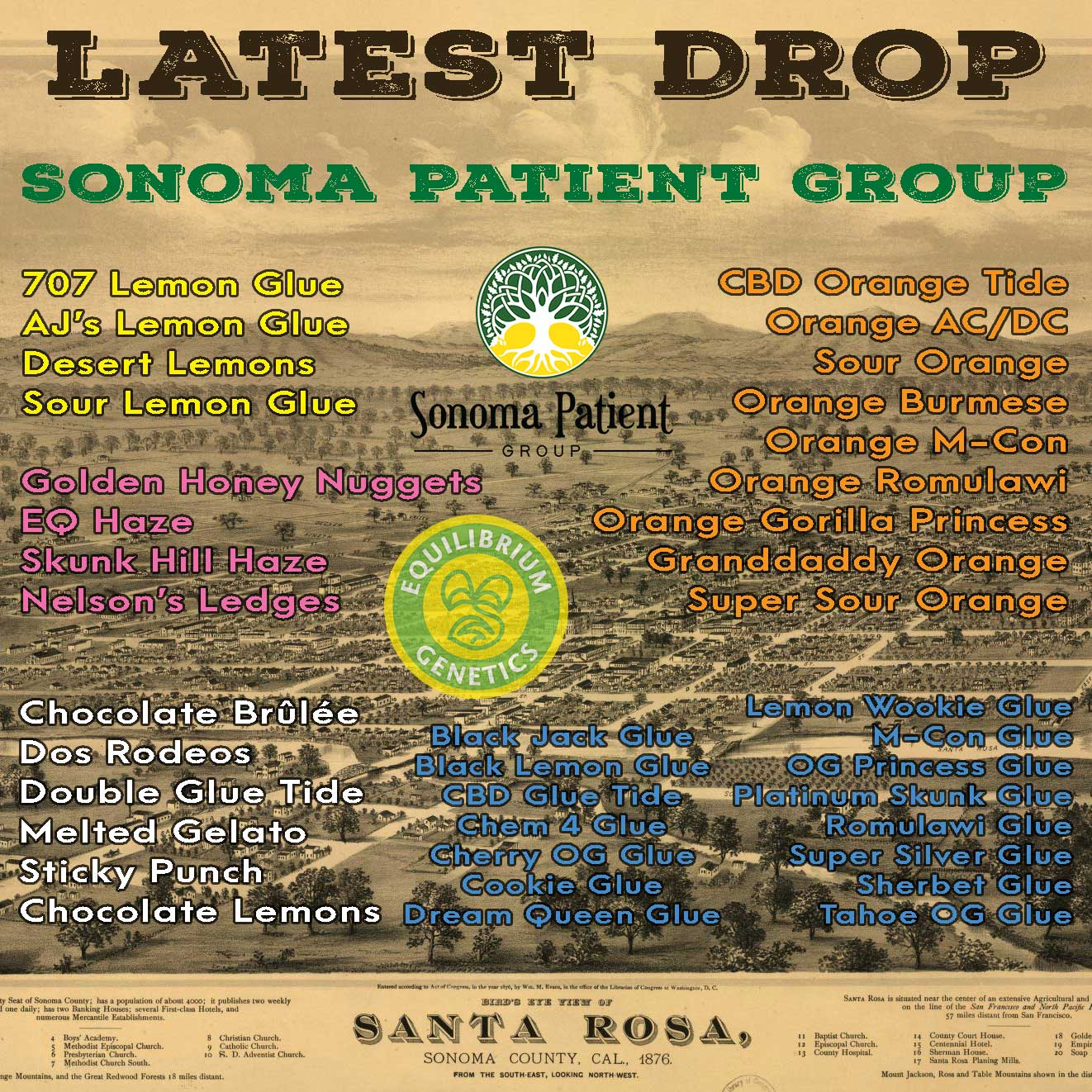 Latest Drop: Sonoma Patient Group
