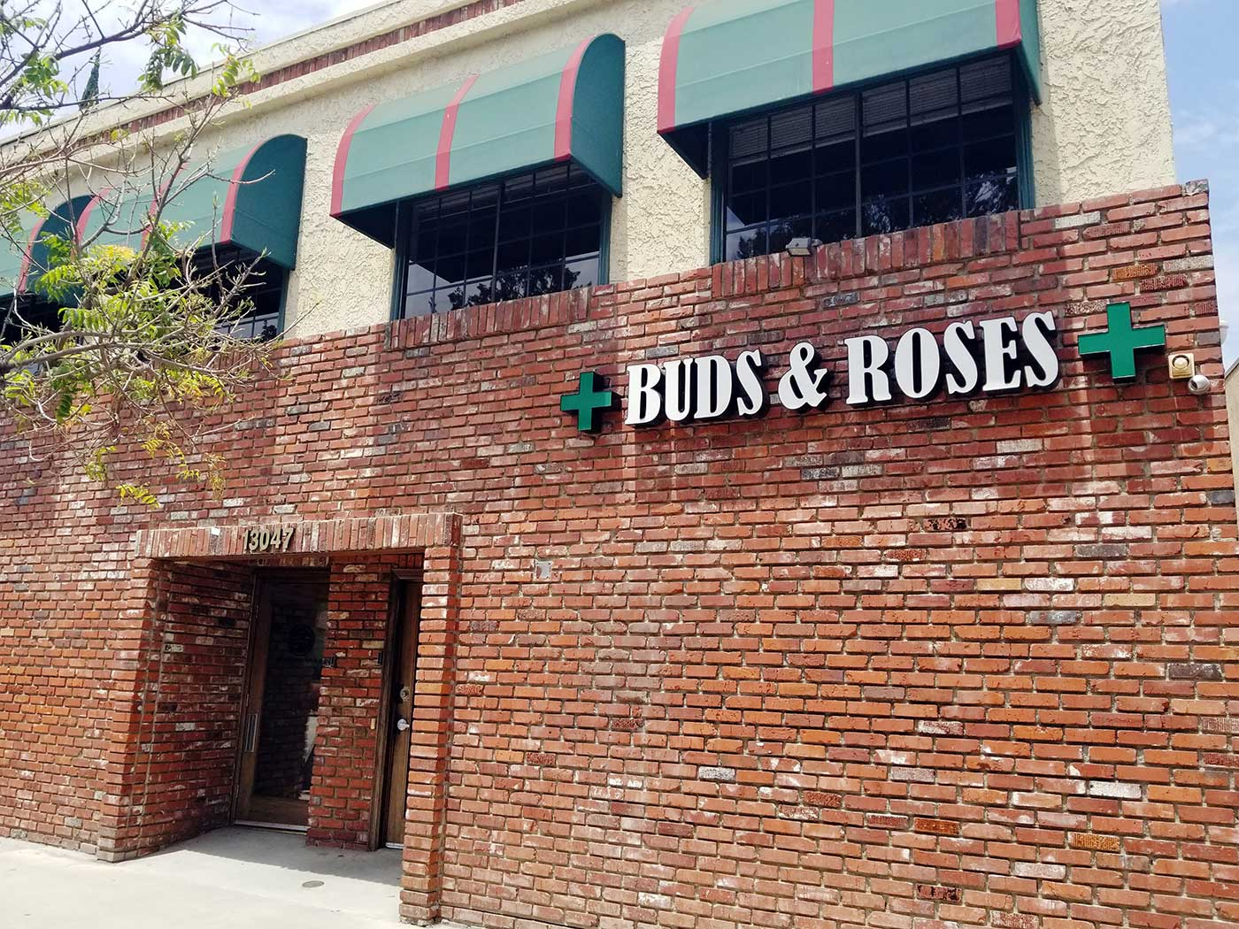 Buds & Roses in Studio City