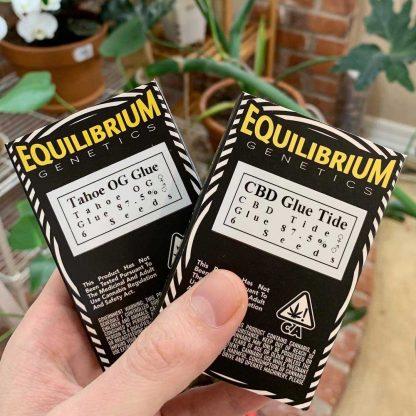 CBD Glue Tide and Tahoe Glue seed packs