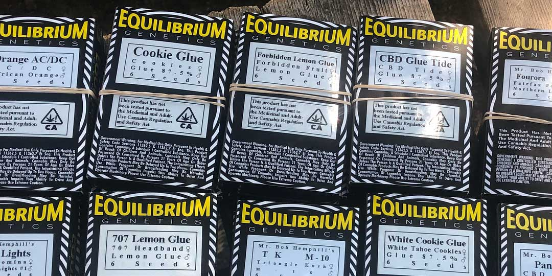 Equilibrium Genetics Seed Pack Backs