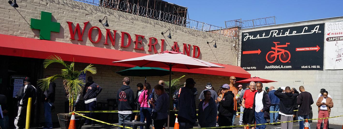 LA Wonderland