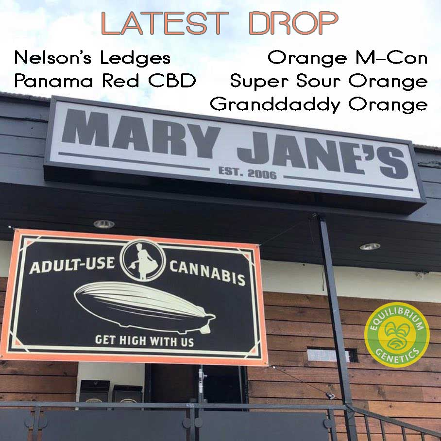 Latest Drop: Mary Jane's Collective