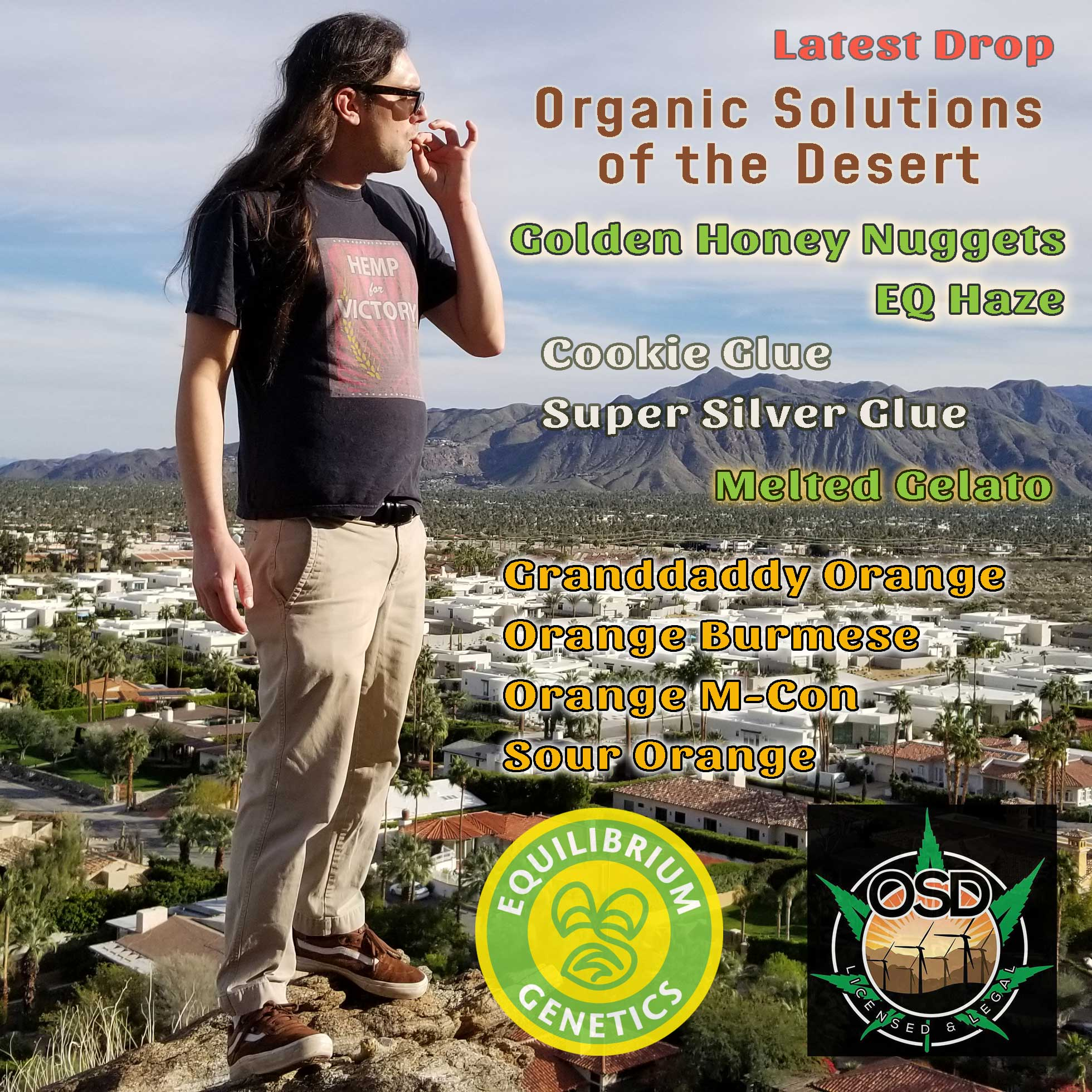 Latest Drop:  Organic Solutions of the Desert