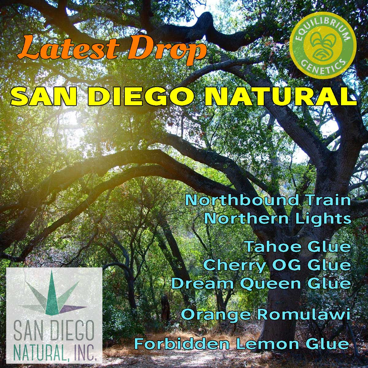 Latest Drop: San Diego Natural