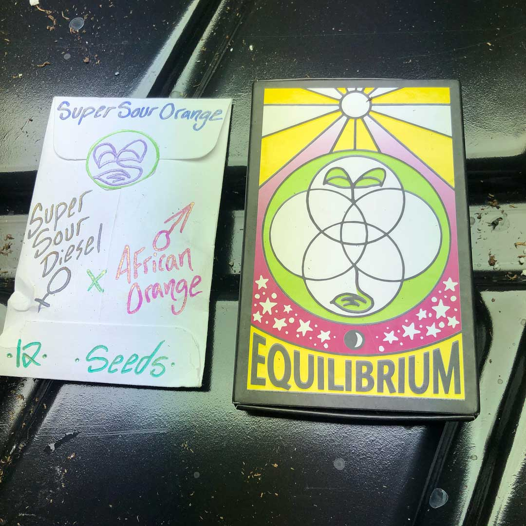 Vintage and current seed packs by Equilibrium Genetics