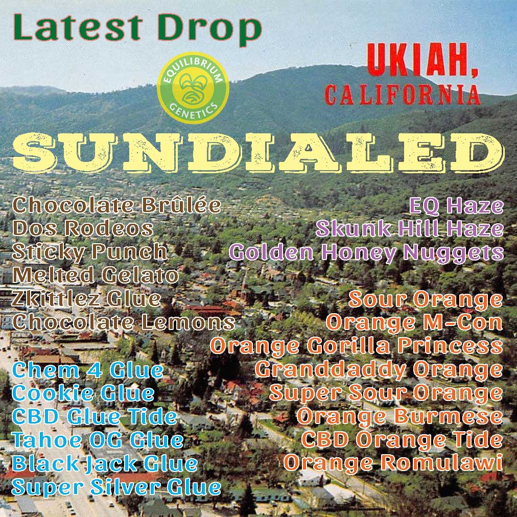 Latest Drop: Sundialed Ukiah